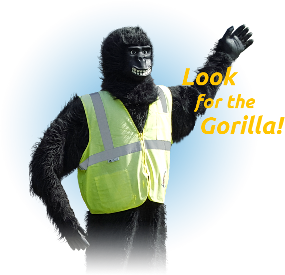 Just Look for the Gorilla!